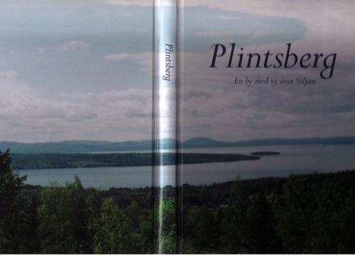 plintsberg1.jpg