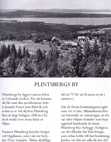 plintsberg2.jpg