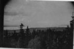 Utsikt över granar mot vatten Plintsberg kanske