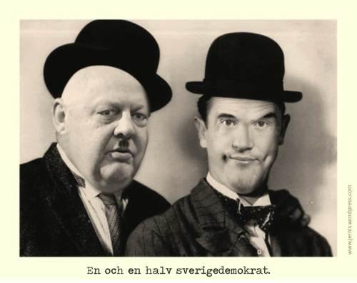 en och en halv sverigedemokrat